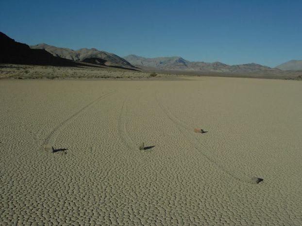 Живые камни из Долины Смерти